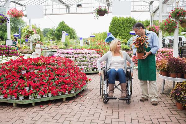 Woman in wheelchair talking to employee carrying plant in garden center Stock photo © wavebreak_media