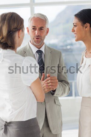 Smiling businesswoman telling something to her colleagues Stock photo © wavebreak_media