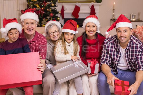 Mosolyog többgenerációs család pózol tart otthon nappali Stock fotó © wavebreak_media