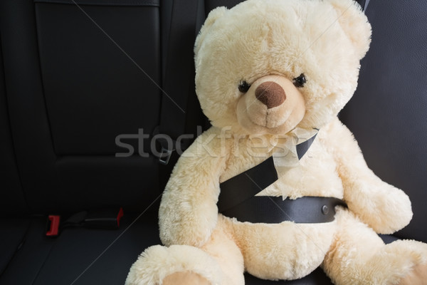 Teddybeer zitting gordel Maakt een reservekopie auto Stockfoto © wavebreak_media
