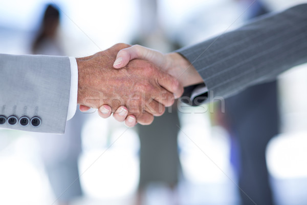 Businessman shaking hands with a co worker Stock photo © wavebreak_media
