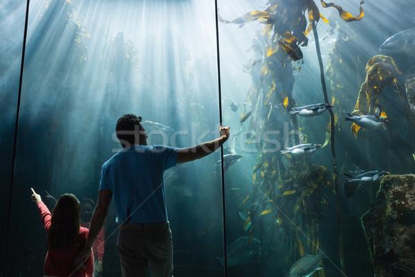 Père fille regarder poissons réservoir aquarium Photo stock © wavebreak_media