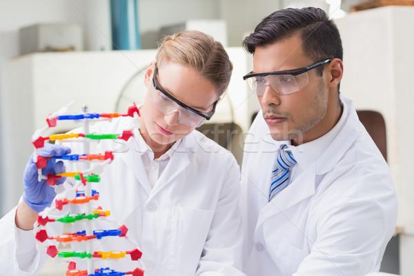 Concentrado cientistas dna laboratório Foto stock © wavebreak_media