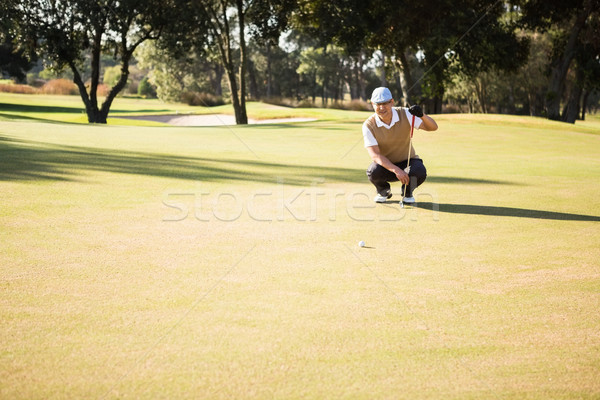 Distant view of golfer crouching and looking his ball Stock photo © wavebreak_media