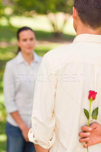 Homme offrant rose petite amie sourire amour Photo stock © wavebreak_media