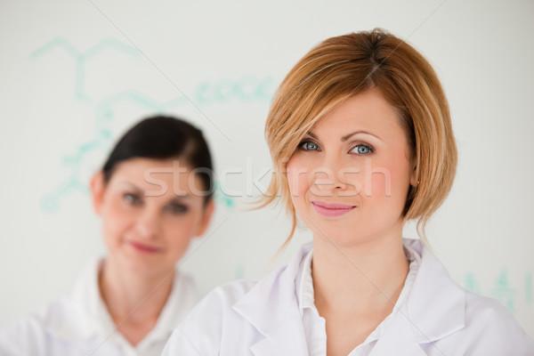 Vonzó nők fehér tábla labor arc oktatás Stock fotó © wavebreak_media