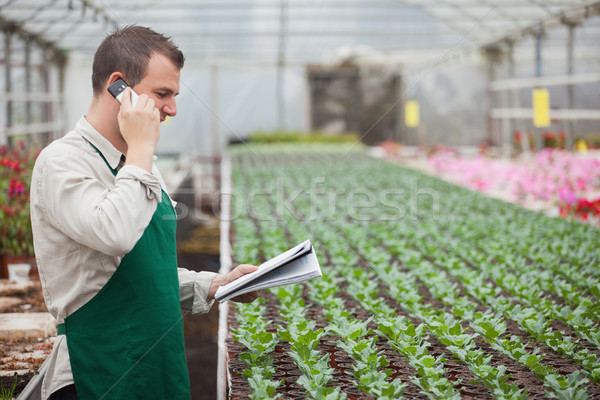 Gardener calling and taking notes for stocktaking in greenhouse nursery Stock photo © wavebreak_media