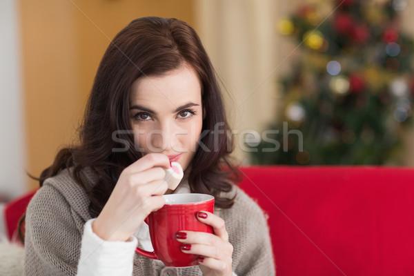 Brunette holding mug and eating marshmallow at christmas Stock photo © wavebreak_media