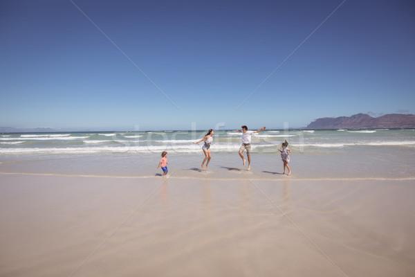 Distant view of family enjoying at beach Stock photo © wavebreak_media
