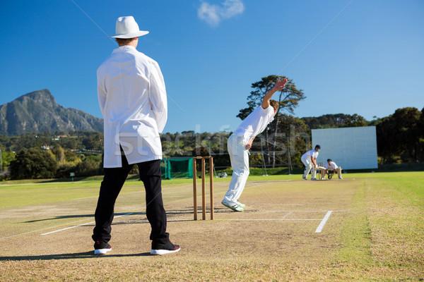 Spor takımı oynama kriket gökyüzü Stok fotoğraf © wavebreak_media