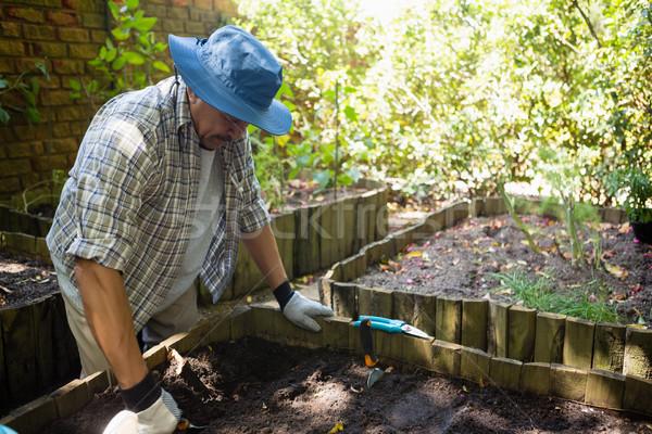 старший человека молодые завода почвы Сток-фото © wavebreak_media
