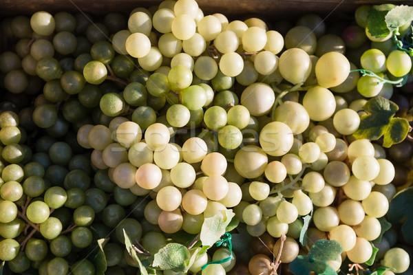 Szőlő láda szőlőskert közelkép természet mező Stock fotó © wavebreak_media