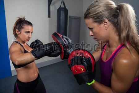 Portré fitt nő emel súlyzók crossfit Stock fotó © wavebreak_media