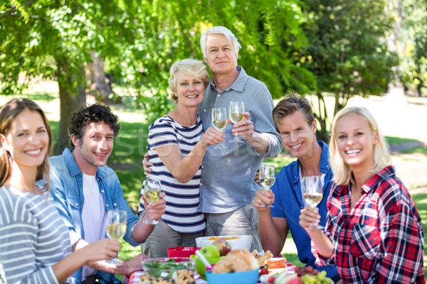 Friends having a picnic with wine Stock photo © wavebreak_media
