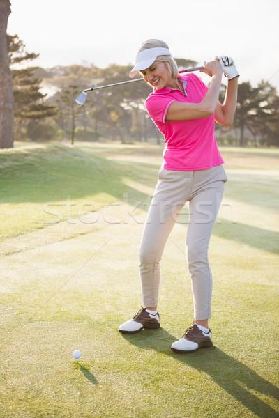 играет гольф области счастливым спорт Сток-фото © wavebreak_media