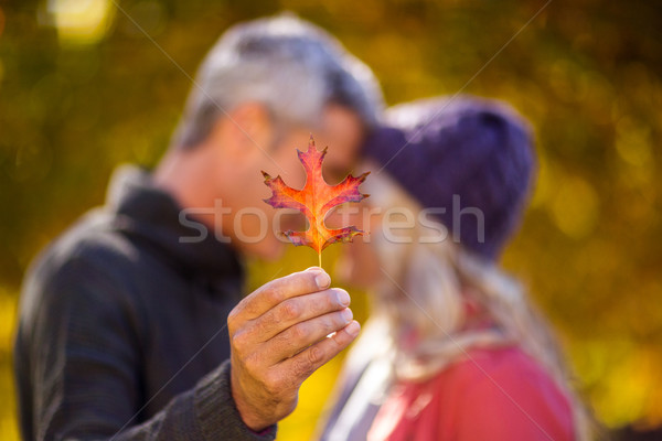 Man holding autumn leaf while kissing woman Stock photo © wavebreak_media