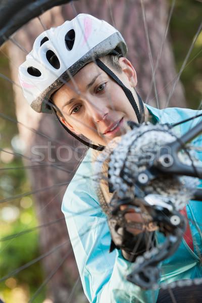 Női hegy motoros megvizsgál kerék bicikli Stock fotó © wavebreak_media