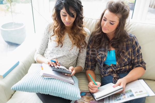 Stockfoto: Vrienden · helpen · ander · huiswerk · sofa · calculator