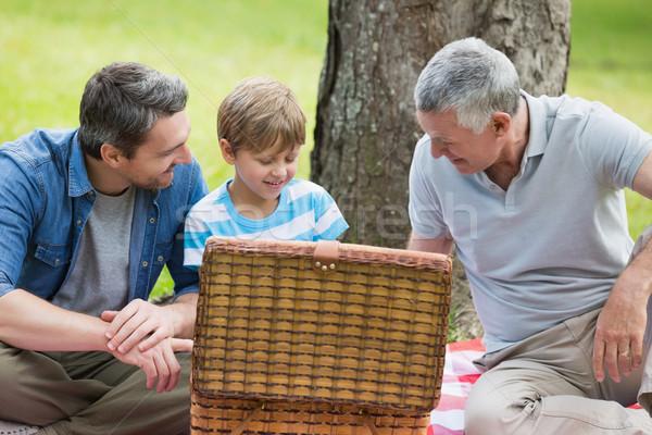 祖父 父から息子 ピクニック用バスケット 公園 座って 家族 ストックフォト © wavebreak_media