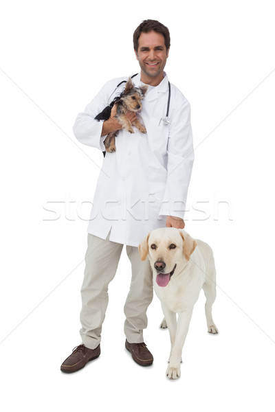 Boldog állatorvos mosolyog kamera Yorkshire terrier Stock fotó © wavebreak_media