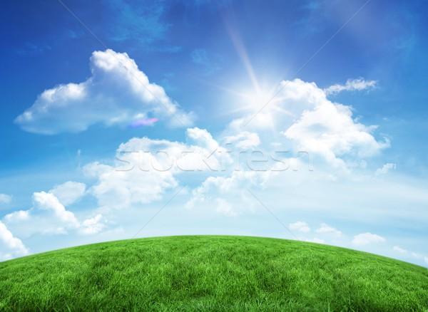 зеленый холме Blue Sky копия пространства трава области Сток-фото © wavebreak_media