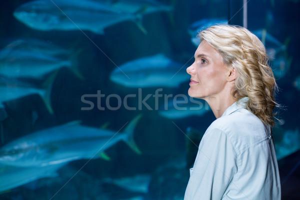 Pretty blonde looking at fish tank Stock photo © wavebreak_media