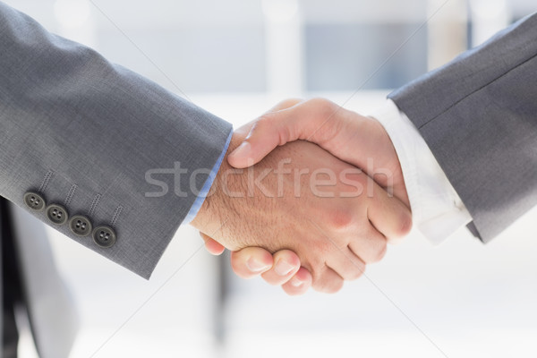 Business colleagues greeting each other Stock photo © wavebreak_media