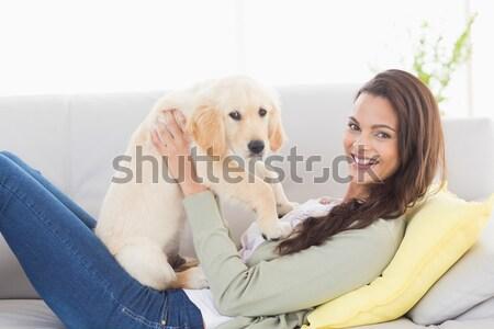 Piękna relaks kanapie domowych psa Zdjęcia stock © wavebreak_media