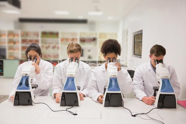 медицинской студентов рабочих микроскоп университета человека Сток-фото © wavebreak_media