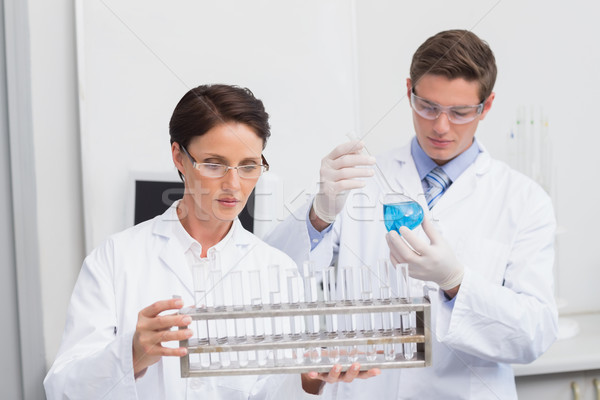 Scientists looking attentively at test tubes Stock photo © wavebreak_media