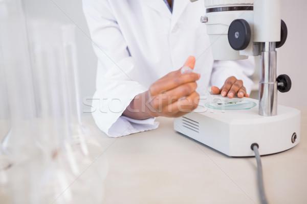 ученого блюдо микроскоп лаборатория медицинской Сток-фото © wavebreak_media
