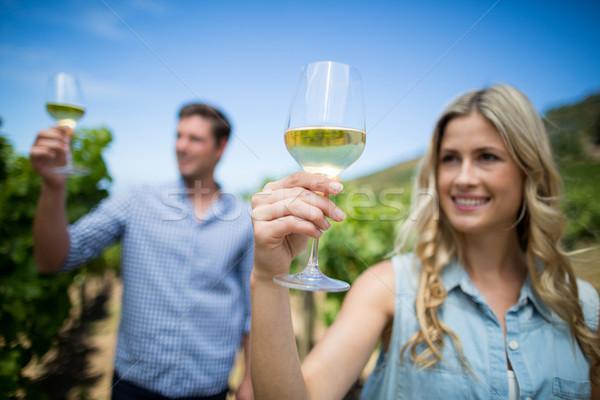 Glimlachend paar wijnglazen wijngaard blauwe hemel Stockfoto © wavebreak_media