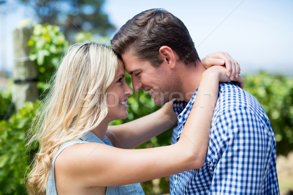 Side view of smiling young couple embracing at vineyard Stock photo © wavebreak_media