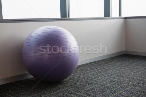 Fitness palla ufficio viola finestra esercizio Foto d'archivio © wavebreak_media