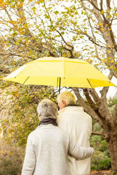 Casal de idosos parque mulher feliz natureza casal Foto stock © wavebreak_media