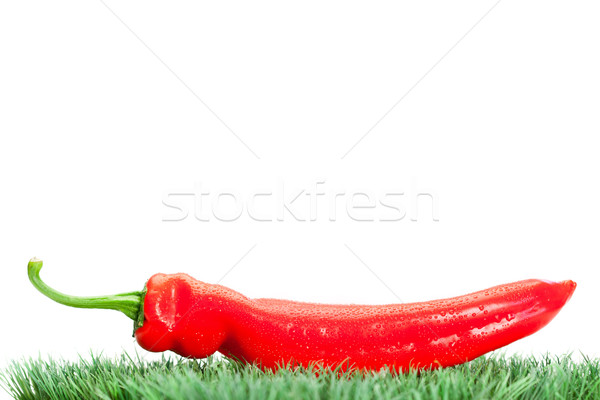 Red pepper on grass on a white background Stock photo © wavebreak_media