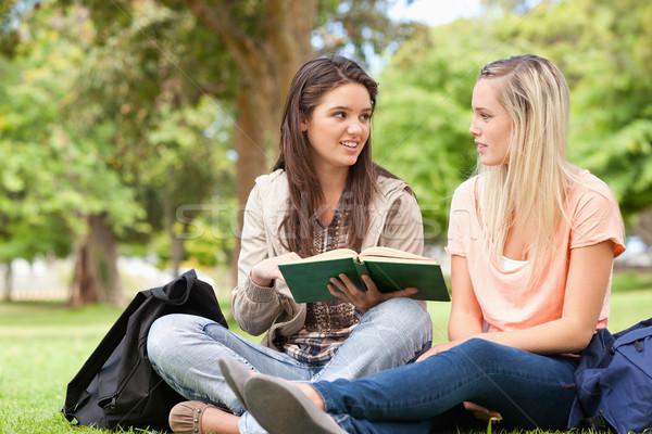 Femenino adolescentes sesión estudiar libro de texto parque Foto stock © wavebreak_media