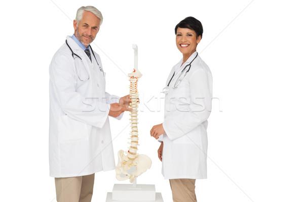 Foto stock: Retrato · dois · sorridente · médicos · esqueleto · modelo