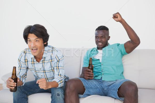 Calcio tifosi guardare tv due Foto d'archivio © wavebreak_media