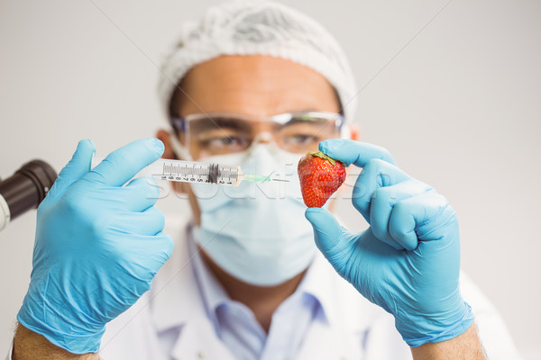 Food scientist injecting a strawberry Stock photo © wavebreak_media
