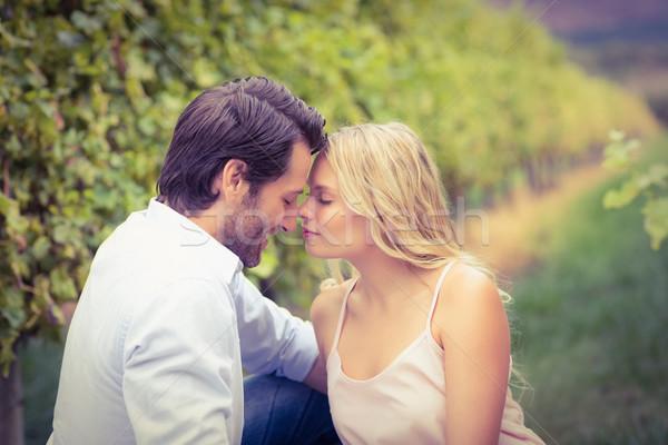 Young happy couple having a romantic time Stock photo © wavebreak_media