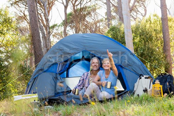 зрелый пару лагерь женщину Сток-фото © wavebreak_media