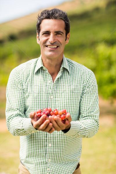 Smiling vintner holding grapes Stock photo © wavebreak_media