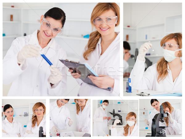 Kollázs kettő női tudósok labor nő Stock fotó © wavebreak_media