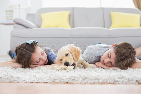 Siblings sleeping with dog on rug Stock photo © wavebreak_media