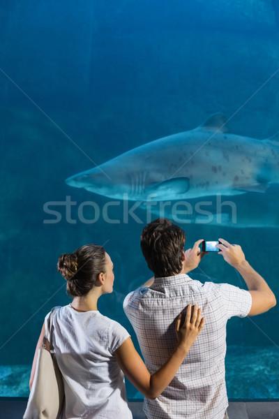 Para Fotografia rekina akwarium człowiek Zdjęcia stock © wavebreak_media