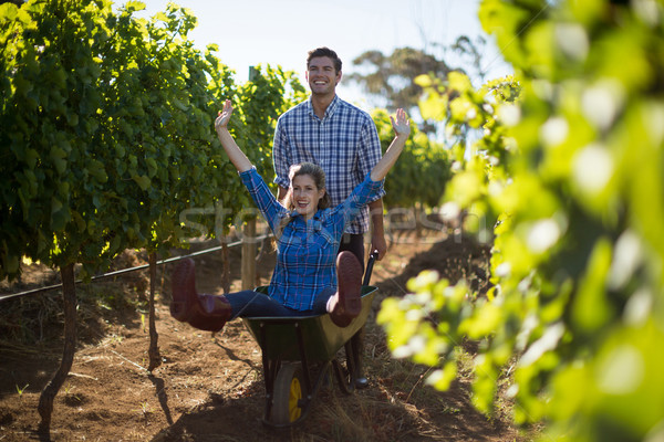Man pushing his cheerful girlfriend in wheelbarrow at vineyard Stock photo © wavebreak_media