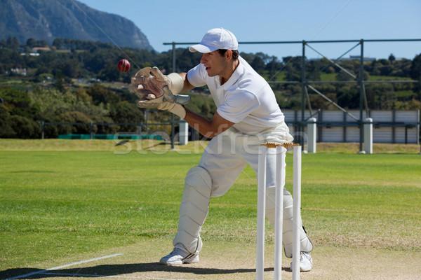 Tam uzunlukta kriket top arkasında alan Stok fotoğraf © wavebreak_media