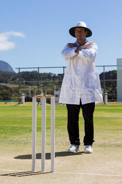 Críquete árbitro chamar assinar combinar Foto stock © wavebreak_media