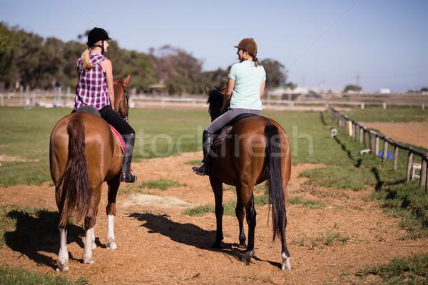 Rear view of female friends sitting on horse Stock photo © wavebreak_media